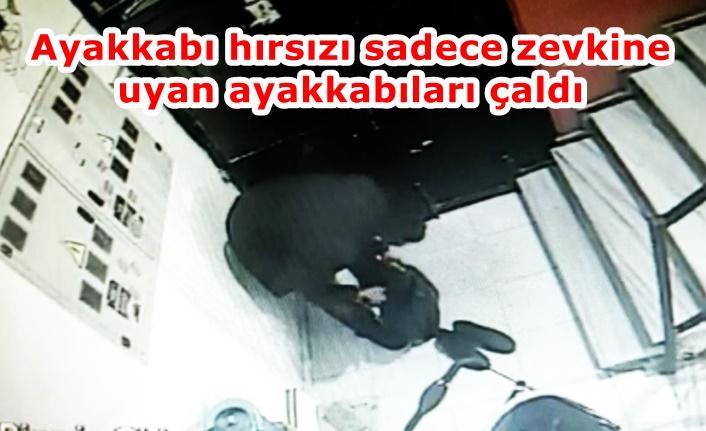 Gaziosmanpaşa'da apartmana giren ayakkabı hırsızı