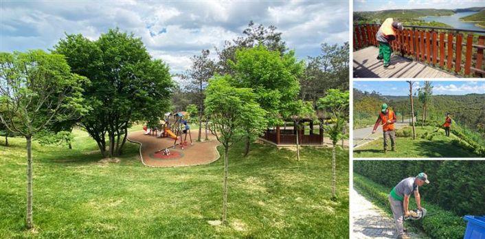 Gaziosmanpaşa Millet Bahçesi Yemyeşil Doğasıyla Yaza Hazırlanıyor