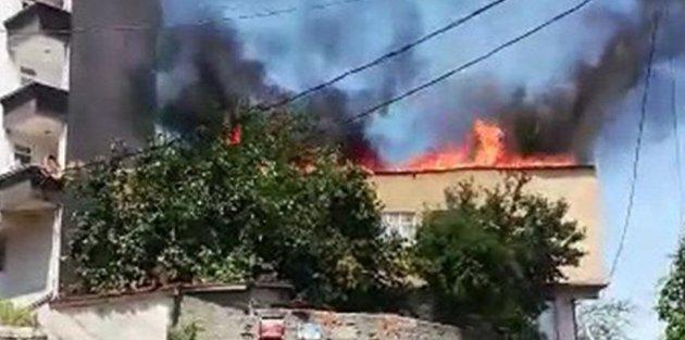 Gaziosmanpaşa'da acı olay! 200 tanesi öldü