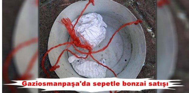 Gaziosmanpaşa'da sepetle bonzai satışı