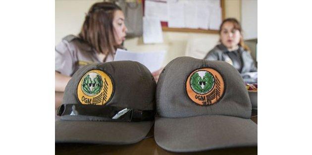 Orman Genel Müdürlüğü 4 bin 996 sözleşmeli personel alacak