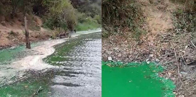 Sultangazide baraj suyu yeşile döndü