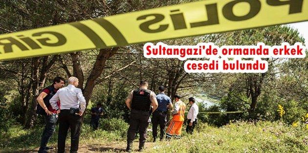 Sultangazi'de ormanda erkek cesedi bulundu