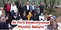 Ak Parti Gaziosmanpaşa Piknikte Buluştu!