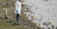 Arnavutköy'de bulunan çocuk cesediyle ilgili yeni gelişme