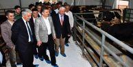 Başkan Usta, kurban pazarlığında arabuluculuk yaptı