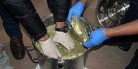 Bayrampaşa'da Kavurma İçi Uyuşturucu