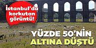 İstanbul'da korkutan görüntü! Alibeyköy Barajı'nda hayvanlar otluyor..