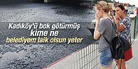 Kadıköy'deki Kurbağalıdere kirden fokurdamaya başladı