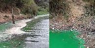 Sultangazi'de baraj suyu yeşile döndü