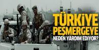 Türkiye peşmergeye neden destek oluyor?
