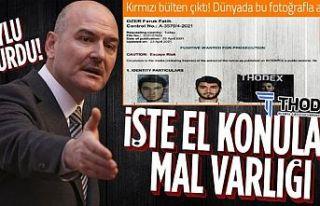Süleyman Soylu: Thodex'in kurucusunun 31 milyon...