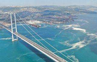 Osmangazi Köprüsü'nü saran deniz salyası havadan...