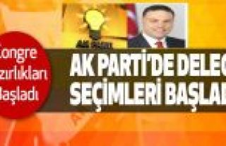 AK Parti Gaziosmanpaşa delege seçimleri başlıyor!
