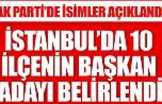 Ak Parti'nin İstanbul'da 10 ilçe başkan adayı...