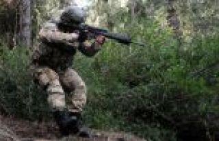 Arananlar listesindeki 2 terörist Amanos'ta etkisiz...