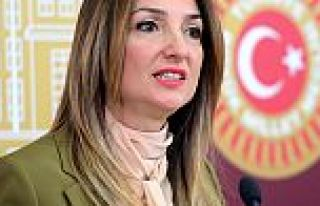 CHP, Aylin Nazlıaka için olağanüstü toplanacak