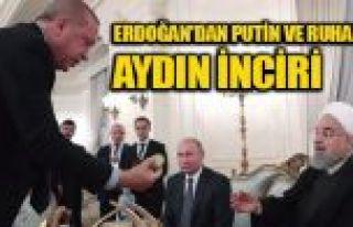 Erdoğan, Putin ve Ruhani'ye incir ikram etti
