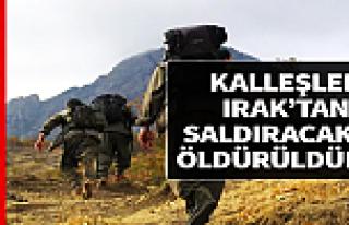 Eylem hazırlığındaki PKK'lı teröristler öldürüldü