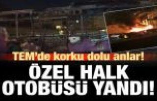Gaziosmanpaşa TEM Otoyolu'nda otobüs alev alev yandı!.