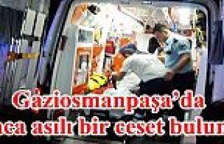 Gaziosmanpaşa'da ağaca asılı bir ceset bulundu