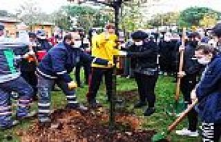 Gaziosmanpaşa'da gençler, Milli Ağaçlandırma...