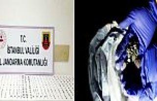 Gaziosmanpaşa'da Jandarma operasyonu: 479 sikke...