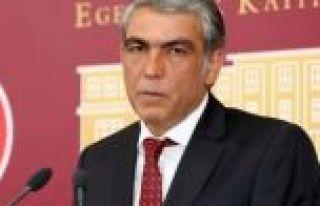 HDP'li vekile hain paylaşım sonrası hapis cezası