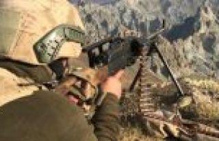 'Kıran-7 Munzur Vadisi Operasyonu' 2 bin 250 personelin...
