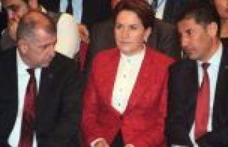 MHP'den ihraç edilen Sinan Oğan, Akşener'in kuracağı...