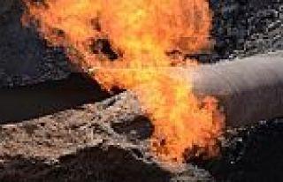 PKK, Ağrı'da dogalgaz hattını havaya uçurdu