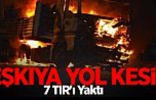 PKK Yol Kesip 7 TIR'ı Yaktı