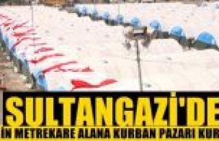 Sultangazi'de 210 bin metrekare alana kurban pazarı...