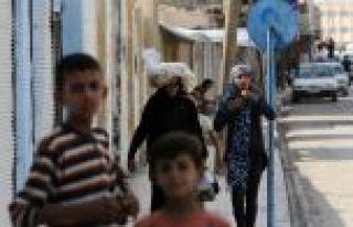 Tel Abyad'da terörün izleri hızla siliniyor