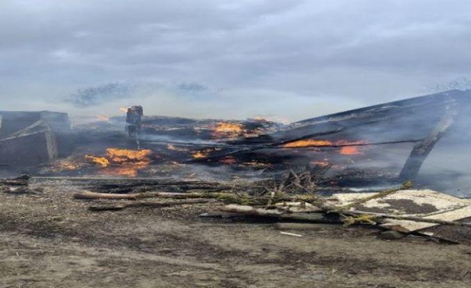 Arnavutköy'de ahırda yangın çıkı: 7 koyun telef oldu
